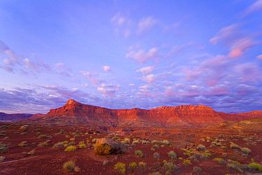 Desert, Glen Canyon National Recreation Area, Utah
