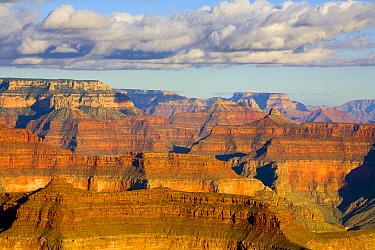 Cumulus clouds the Grand Canyon National Park, Arizona