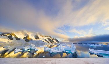Coast with icebergs at dusk, Booth Island, Antarctic Peninsula, Antarctica