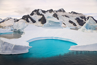 Icebergs stranded in shallow bay with emerald pool, Booth Island, Antarctic Peninsula, Antarctica