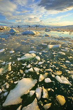 Ice floes and coast, Antarctic Peninsula, Antarctica