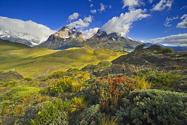 Peaks, Cuernos del Paine, Torres del Paine National Park, Patagonia, Chile