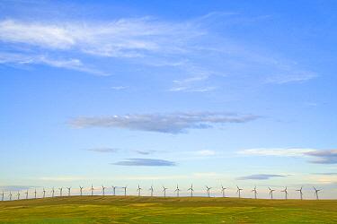 Wind farm turbines in fields, Alberta, Canada
