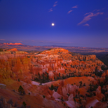 Hoodoo rock formations with moon, Sunset Point, Bryce Canyon National Park, Utah
