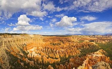 Hoodoo rock formations at sunrise, Bryce Canyon National Park, Utah