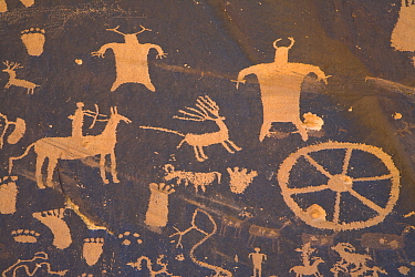 Petroglyph panel, showing humans, animals and symbols, etched in sandstone, Newspaper Rock State Park, Utah