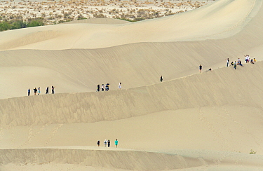 Sand dunes and hikers, Mojave Desert, Death Valley National Park, California