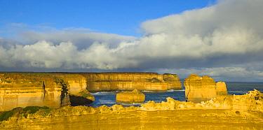 Limestone seastack and coastal cliffs at sunset, Port Campbell National Park, Victoria, Australia