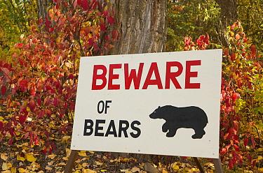 Bear warning sign, Fulton River, British Columbia, Canada