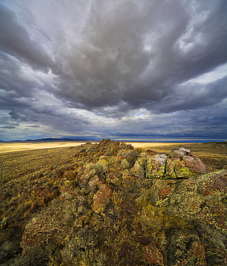 Cumulus clouds and grassland, Hart Plateau, Hart Mountain National Wildlife Refuge, Oregon