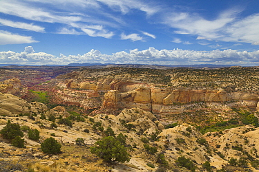 Sandstone plateau and canyons, Grand Staircase-Escalante National Monument, Utah