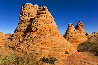 Eroded sandstone rock formation, Paria Canyon, Colorado Plateau, Arizona