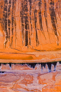 Stains from water seeps on sandstone, Lake Powell, Glen Canyon National Recreation Area, Utah
