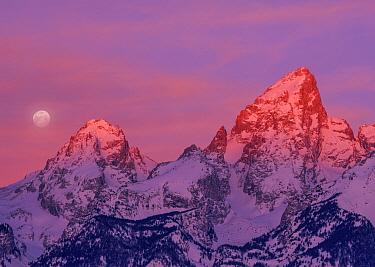 Full moon and sunrise over mountains, Grand Tetons, Grand Teton National Park, Wyoming