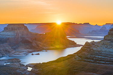 Padre Bay and Lake Powell from Alstrom Point at sunrise, Glen Canyon National Recreation Area, Utah