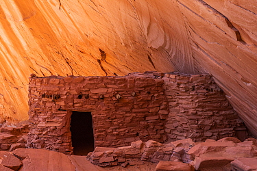 Indigenous ruins, Defiance House, Lake Powell, Glen Canyon National Recreation Area, Utah