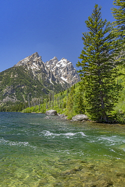 Creek entering Jenny Lake, Grand Tetons, Grand Teton National Park, Wyoming