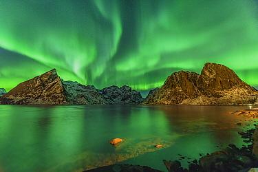 Northern lights over coastal mountains, Sakrisoy, Iceland