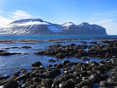 Coast with mountains, Hornvik Bay, Hornstrandir Nature Reserve, Iceland