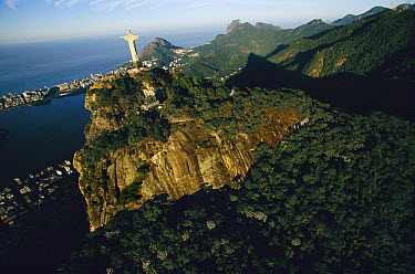 Statue of Christ the Redeemer towers over the 8,150 acre Tijuca National Park, one of the world's largest urban forests, Rio de Janeiro, Atlantic Forest ecosystem, Brazil  -  Mark Moffett