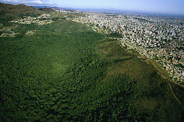 Aerial view of Belo Horizonte, Brazil's third largest city, in contrast to the natural park along the city's southern border, Atlantic Forest ecosystem, Brazil  -  Mark Moffett