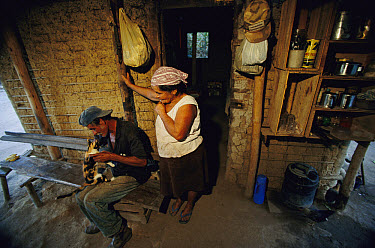 Squatters Jose and Carmosina Costa have built a house on the site of an abandoned cattle ranch in hopes that the government will give them part of the land which lies near the Poco Das Antas Biologica...  -  Mark Moffett