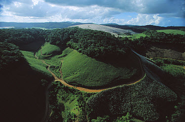 Silted river runs past forest preserved by the Serra Grande Sugar Company on more than one-third of its 60,000 acres in order to protect a watershed, Alagoa, south Brazil  -  Mark Moffett