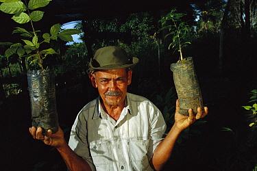 Gilberto Alves de Lima raises plants from the forest to sell, Bahia State, Atlantic Forest ecosystem, Brazil  -  Mark Moffett