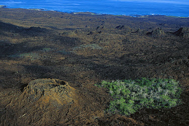 Aerial view of craterized district, San Cristobal Island, Galapagos Islands, Ecuador  -  Mark Moffett