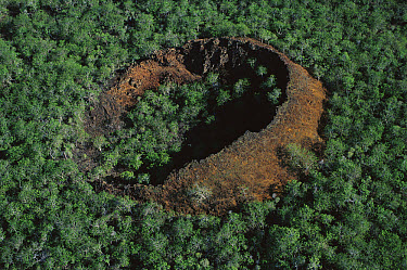 Aerial view of tree-covered crater, San Cristobal Island, Galapagos Islands, Ecuador  -  Mark Moffett