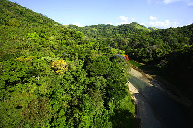 Aerial view of the Canal Zone, upper Chagres River, upper Chagres National Park, Panama  -  Christian Ziegler