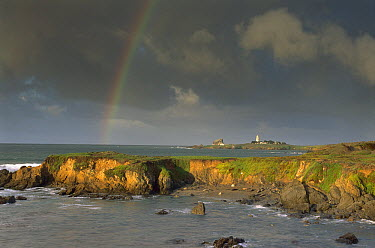 Rainbow and Piedras Blancos Lighthouse, Piedras Blancos coastline, California  -  Suzi Eszterhas