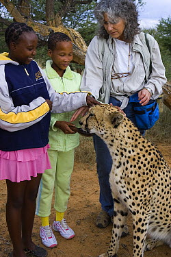 Cheetah (Acinonyx jubatus) ambassador Chewbacca and Dr. Laurie Marker during an education program with Namibian school children, Cheetah Conservation Fund, Otijwarongo, Namibia  -  Suzi Eszterhas