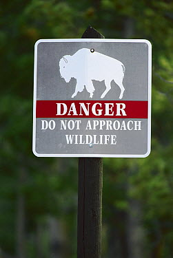 Sign warning about bison, Yellowstone National Park, Wyoming  -  Ingo Arndt