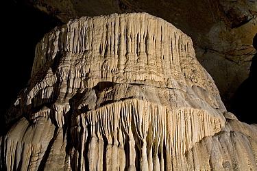 Cavern formation, Cacahuamilpa Caverns, Grutas de Cacahuamilpa National Park, Guerrero, Mexico  -  Ingo Arndt