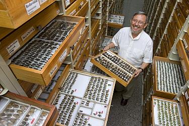 Researcher Jim Lewis curator of the true bug collection at INBio, San Jose, Costa Rica  -  Ingo Arndt