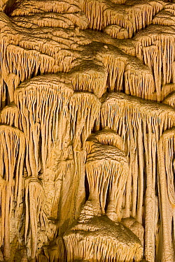 Calcite flowstone formations, Carlsbad Caverns National Park, New Mexico  -  Ingo Arndt