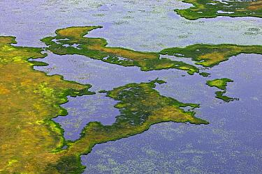 Aerial view of wetlands near Anchorage, Alaska  -  Ingo Arndt
