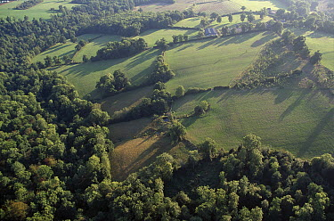 Holly Farm, aerial view, farmhouse and area at top right, surrounded by trees, West Sussex, England  -  Stephen Dalton