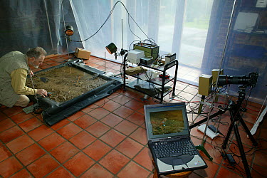 Studio set up for photographing jumping Mudskippers using a digital camera and high speed flash  -  Stephen Dalton
