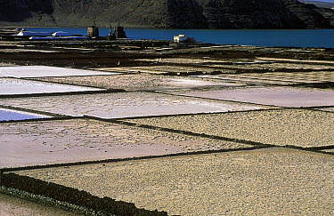 Old evaporative salt ponds of Janubio near Lanzarote, Canary Islands, Spain  -  Albert Lleal