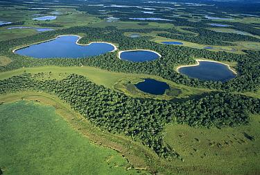 Lakes in April after rainy season near Rio Negro, southern Pantanal, Brazil  -  Theo Allofs