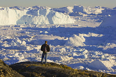 Hiker overlooking fjord covered with small pieces of ice and large icebergs, mid-summer, June, Greenland  -  Theo Allofs