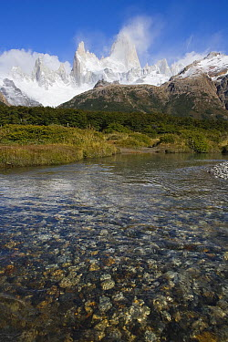 Creek with Mount Fitzroy in background, border of Argentina and Chile  -  Theo Allofs