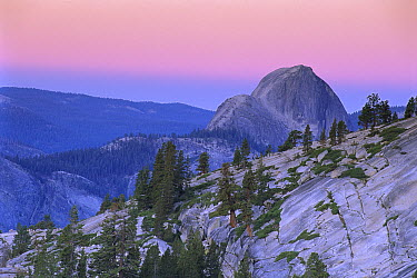Half Dome seen from Olmsted Point, Yosemite National Park, California  -  Theo Allofs