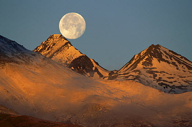 Moon over snow-covered mountains, Kluane National Park, Canada  -  Theo Allofs