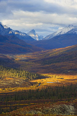 View from North Fork Pass towards Tombstone Mountains, Canada  -  Theo Allofs
