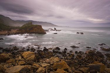 Stormy coast north of Punakaiki, New Zealand  -  Theo Allofs
