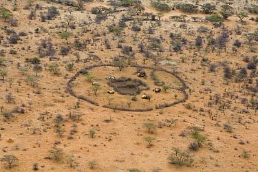 Samburu homestead from the air showing corral and homes in arid landscape, Kenya  -  Suzi Eszterhas