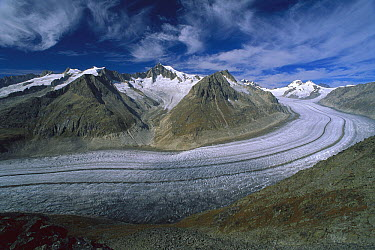 Aletsch Glacier moving through the Swiss Alps showing lateral and medial moraines, Wallis, Switzerland  -  Thomas Marent